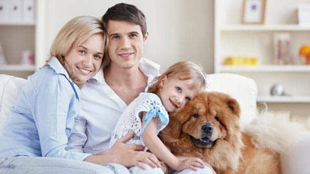Wills & Trusts dog-young-family Direct Wills Bedminster